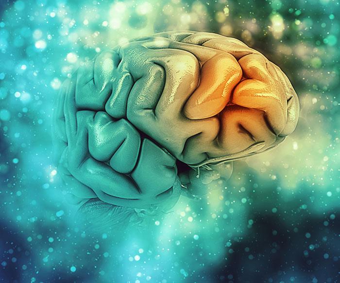 Prevenire la malattia di Alzheimer con l'esercizio mentale